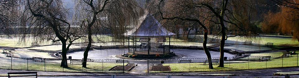 Official Pontypridd Town